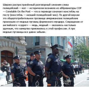 police_usa_14.jpg
