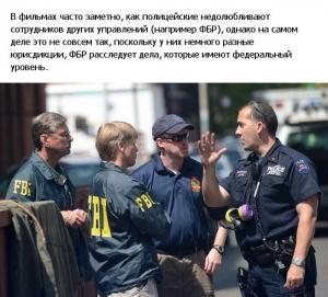 police_usa_19.jpg
