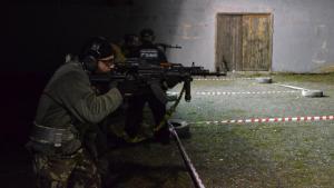 artimida-rifle-111013_09.jpg