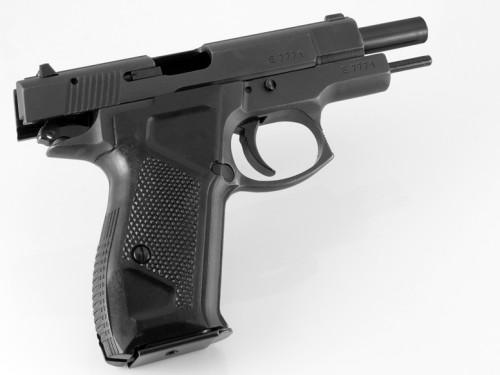 02. Fort-12 Pistol